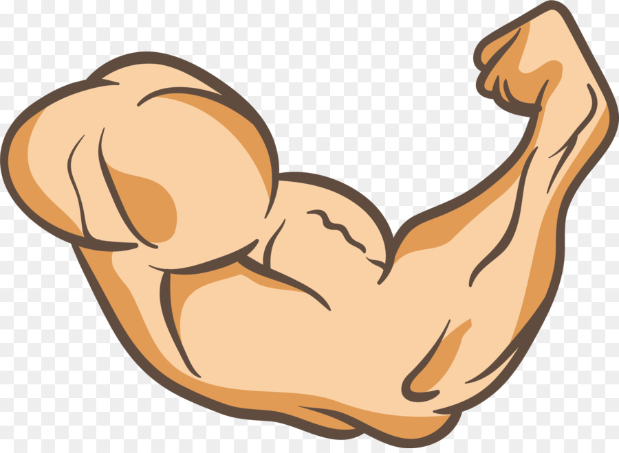 Arms Thumb Muscle Clip art - A powerful arm png download - 2359*1711 ...