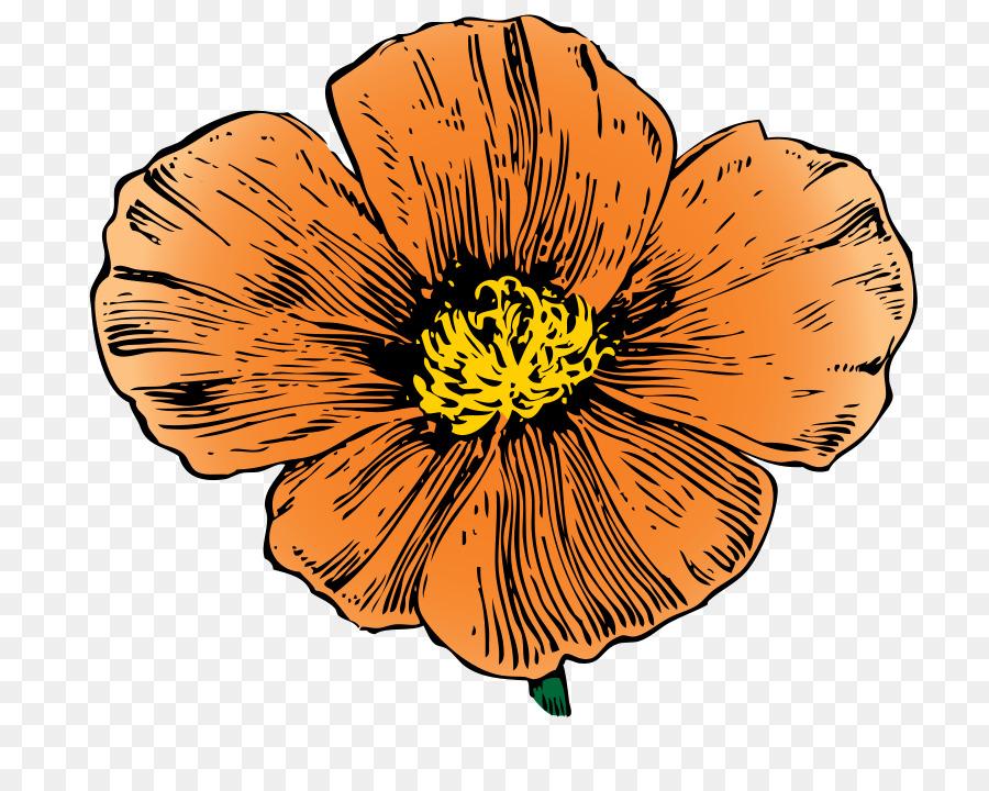 California poppy clip art ca cliparts png download 800703 california poppy clip art ca cliparts mightylinksfo