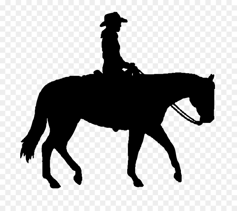 Dallas Cowboys Horse Clip Art Rodeo Silhouette Png Download 795