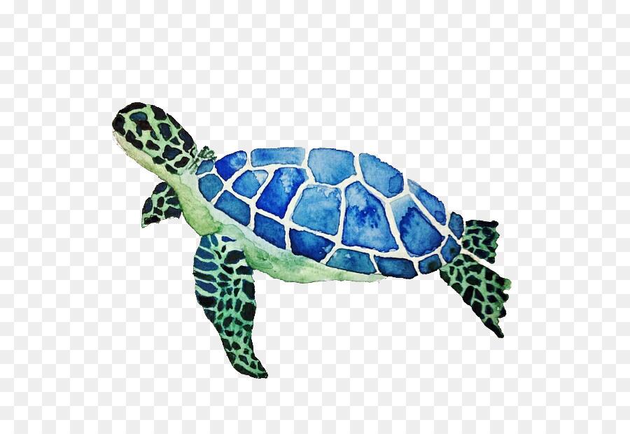 Tortuga verde Color - Cute little turtle png dibujo - Transparente ...