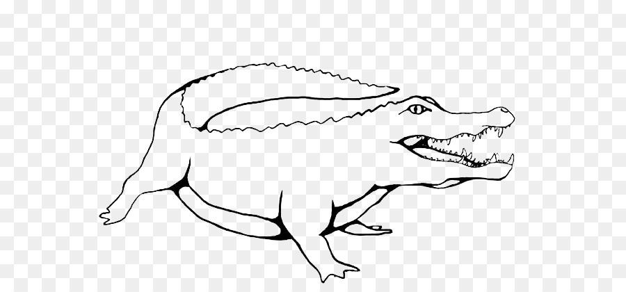 Los cocodrilos para Colorear libro cocodrilo Americano Infantil ...