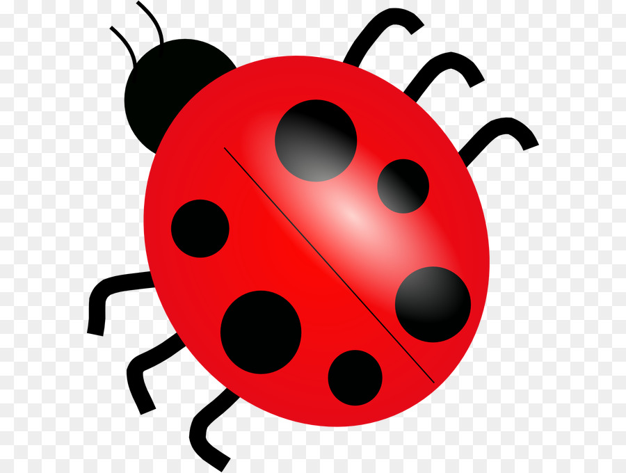 ladybird clip art ladybug png download 650 679 free
