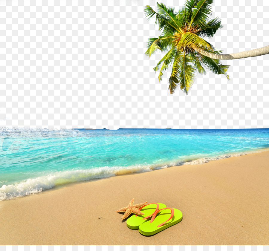 Summer Beach Poster Background Png