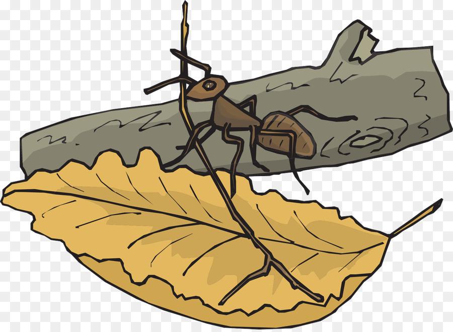 Las Hormigas Insectos Hoja Clip art - Las hormigas en las hojas ...