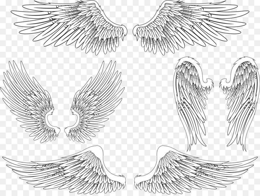 Angel wing Bird Feather - Creative wings 4785*3587 ...