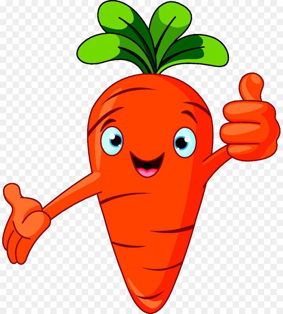 Cartoon Sticks Of Carrot Png Download 885 1000 Free Transparent