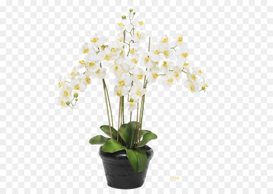 Moth Orchids Flowerpot White Flower Pots Black Floral Decoration