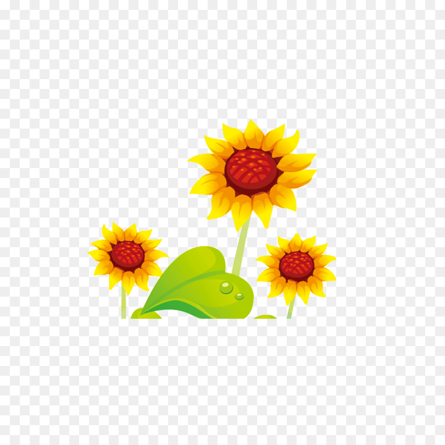 Common sunflower cartoon cute cartoon sunflower flowers png common sunflower cartoon cute cartoon sunflower flowers mightylinksfo