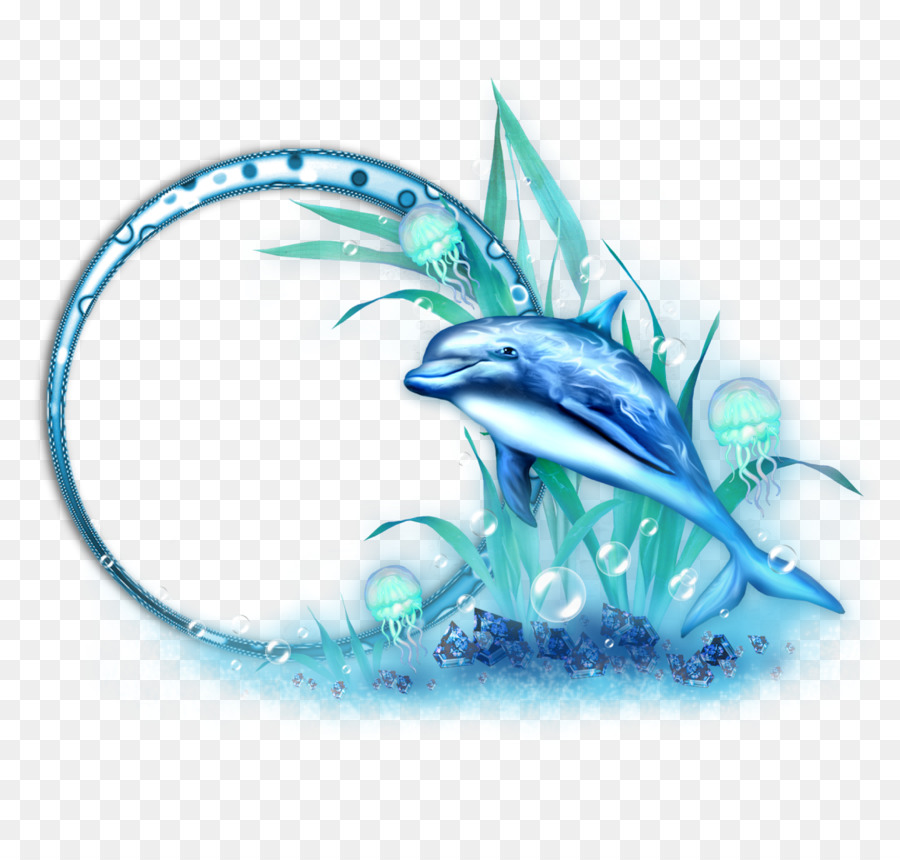 Picture frame Photography Decoupage Ornament - dolphin png download ...