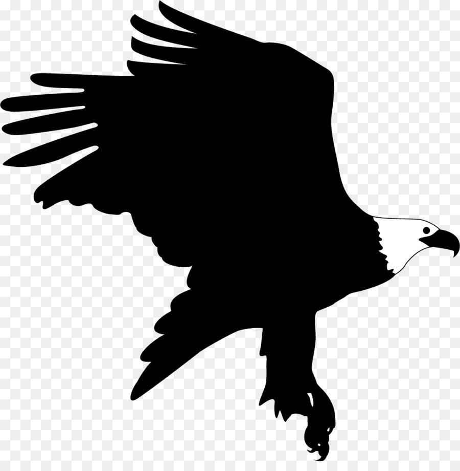 El Águila De Cabeza De Pájaro - Águila de aterrizaje Formatos De ...