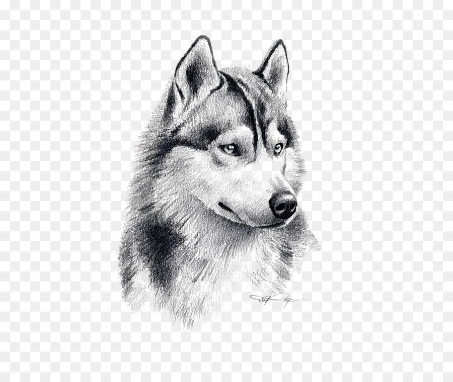 Siberian Husky Puppy Drawing Pencil Art