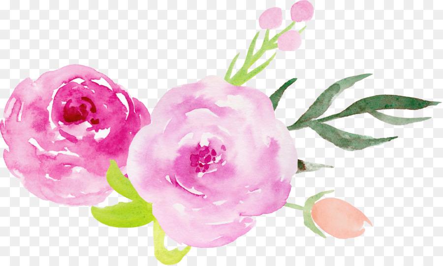 De Color Rosa. Best Download Comp With De Color Rosa