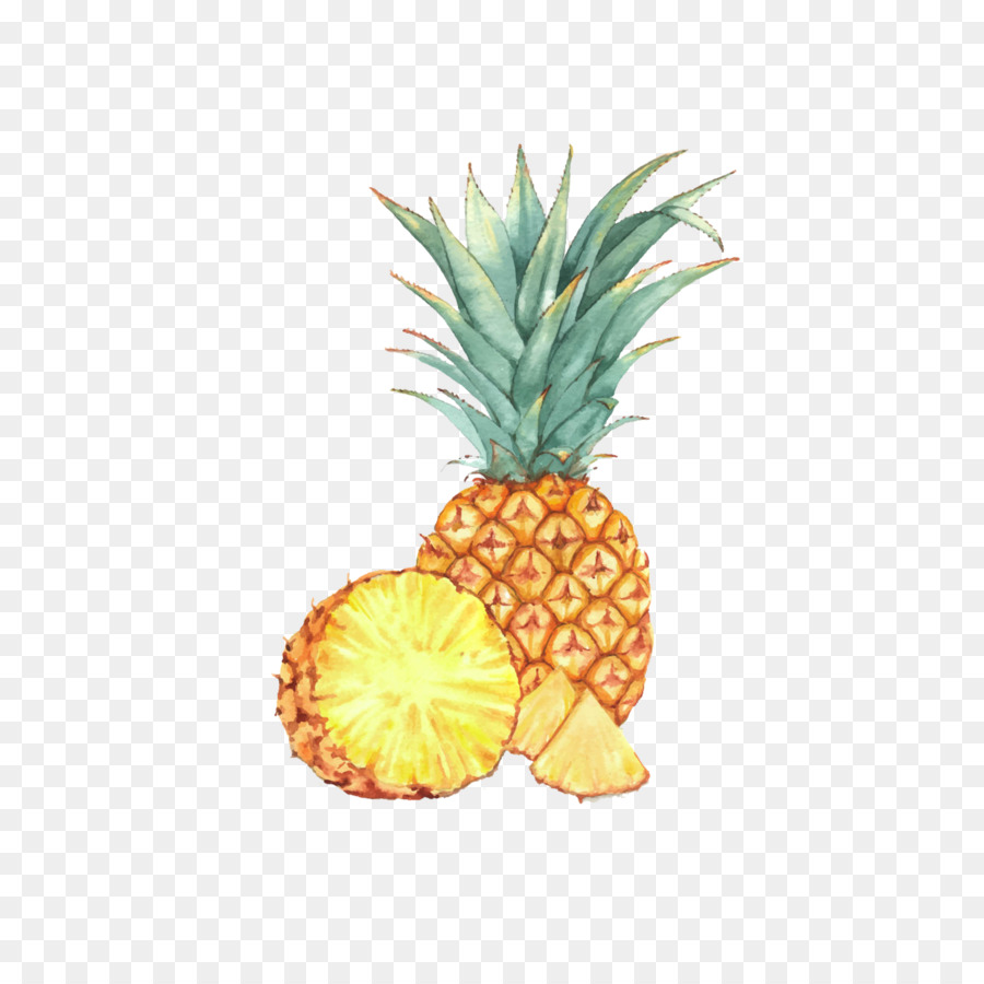 Watercolor Painting Fruit Drawing Illustration Pineapple