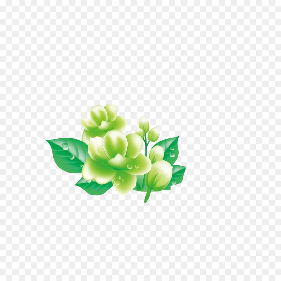 Flowering Tea Arabian Jasmine Mo Li Hua Chrysanthemum Png Download