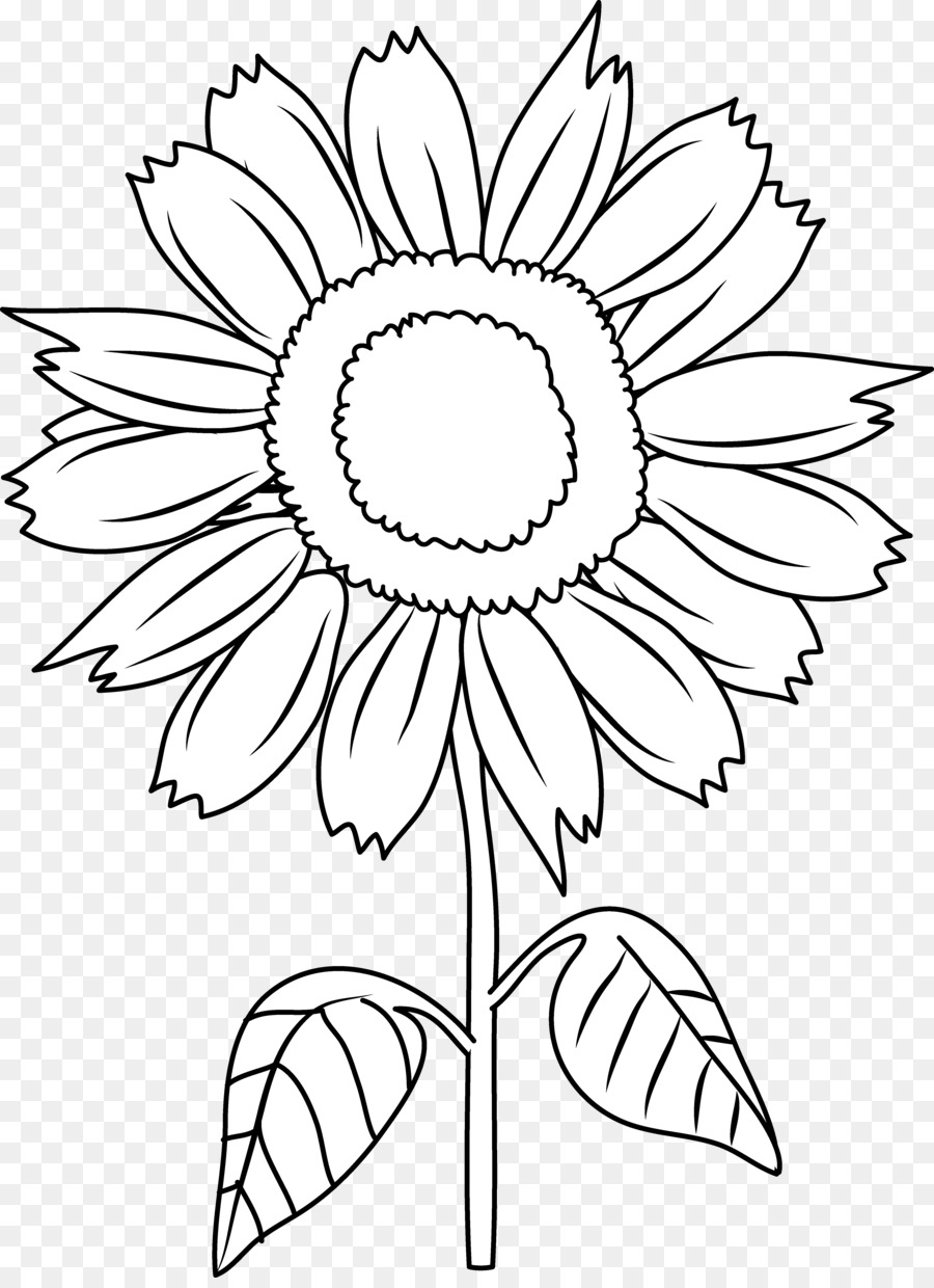 Black And White Clip Art Black Sunflower Cliparts Png Download