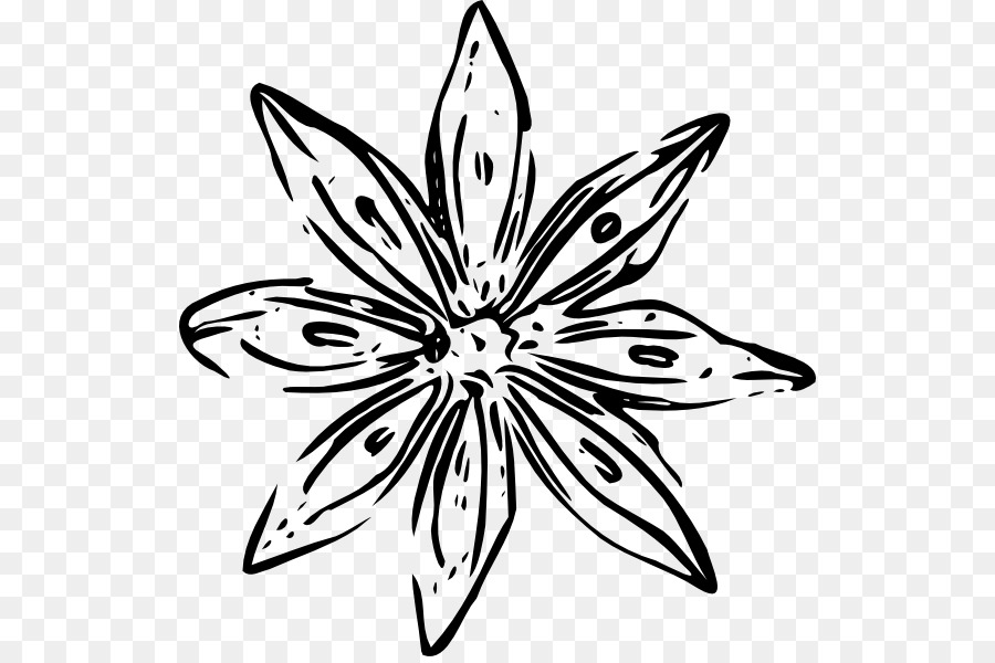 Flower free content clip art black and white flower outline png flower free content clip art black and white flower outline mightylinksfo Gallery