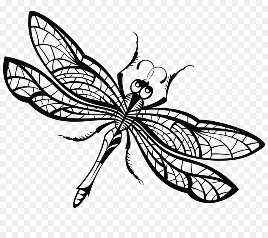 drawing dragonfly royalty free illustration dragonfly creative png