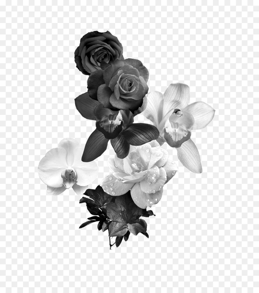 Flores En Blanco Y Nego Beautiful Las Rosas Silvestres Ilustracin