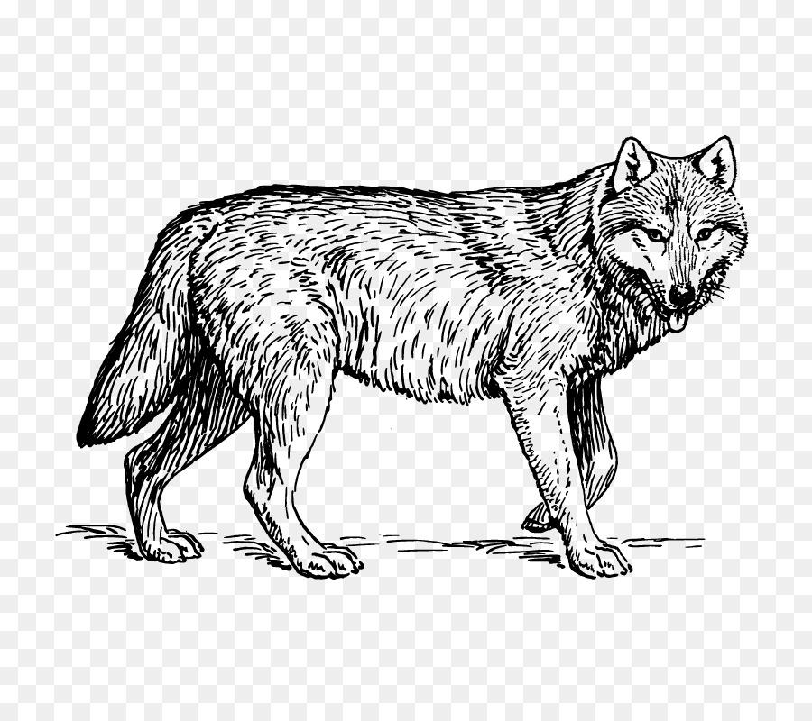 Perro de libro para Colorear de Caballos Animal de León - Lobo png ...