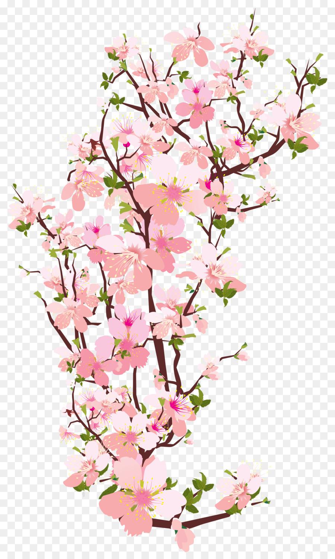 free clip art arrow  »  9 Photo »  Amazing..!
