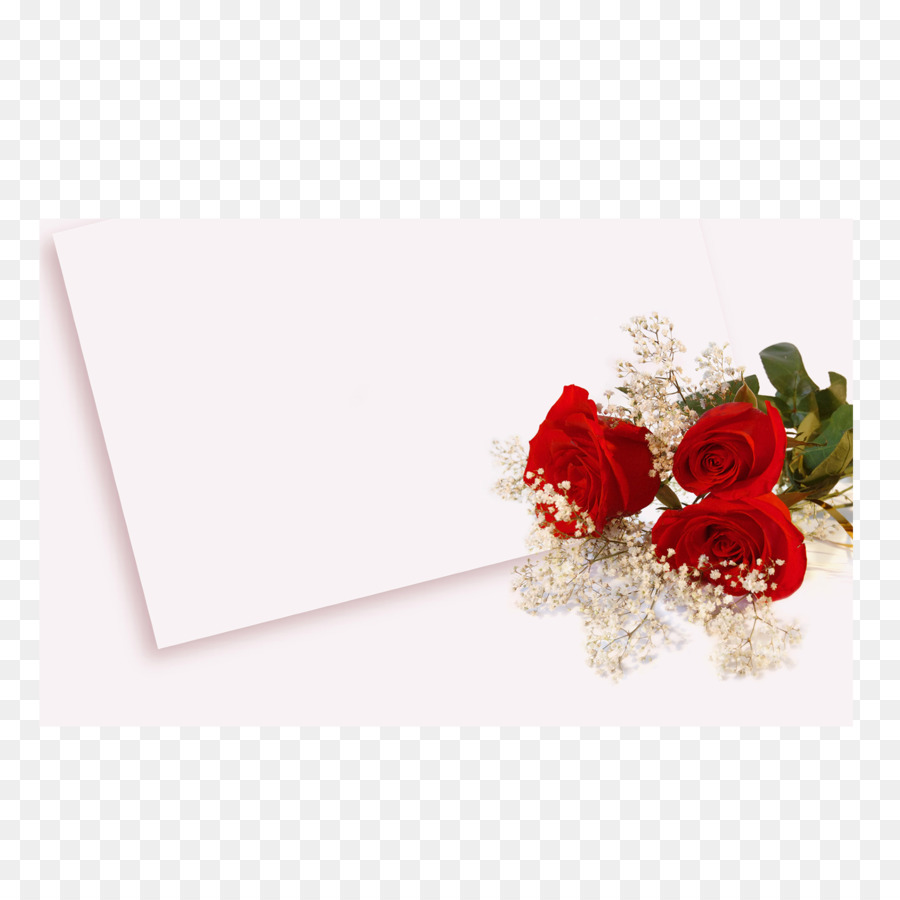 Wedding invitation high definition video wallpaper white rose png wedding invitation high definition video wallpaper white rose stopboris