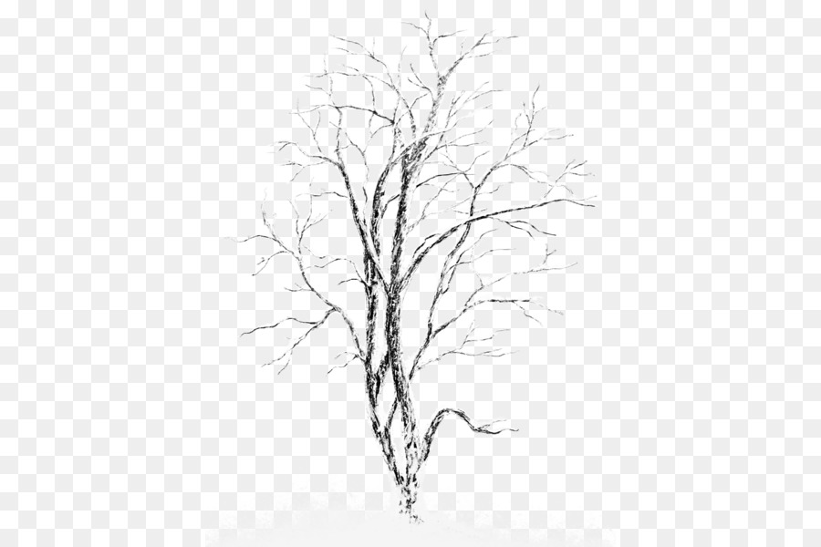 silver birch tree clip art snowcovered trees png