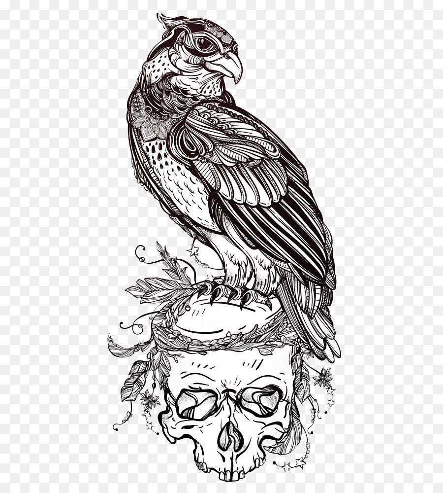 Aves de presa de Dibujo de Búho - Águila en el Cráneo png dibujo ...