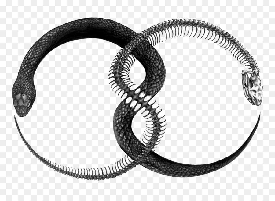 Ouroboros Tattoo Symbol Clip art - Ouroboros PNG Transparent Images png download - 1280*916 ...