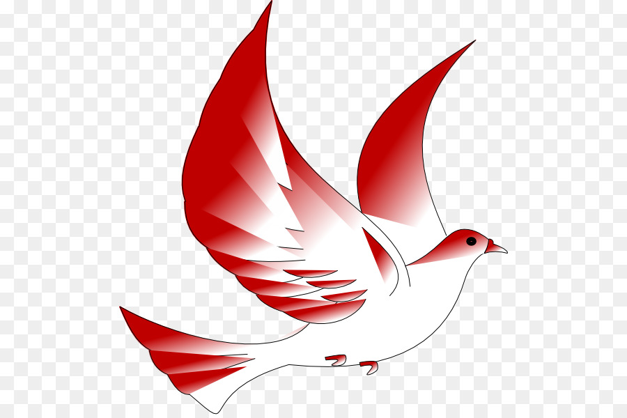 Columbidae Confirmation In The Catholic Church Symbol Clip Art
