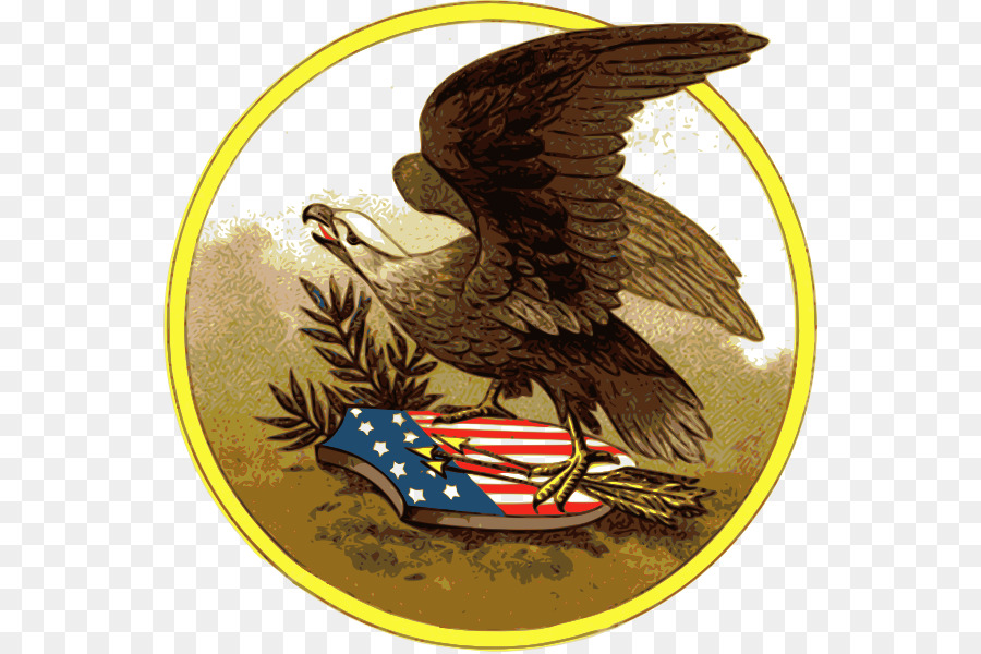 United States Bald Eagle Postcard Clip Art American Eagle Cliparts
