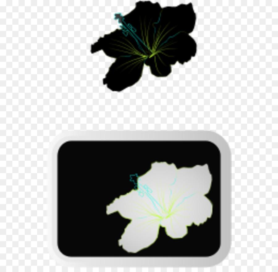Shoeblackplant Flower Clip Art Picture Of Hibiscus Plant Png