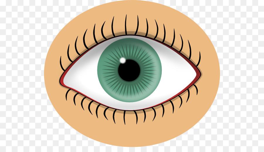 human eye iris clip art eye art clip png download 600 503 free rh kisspng com