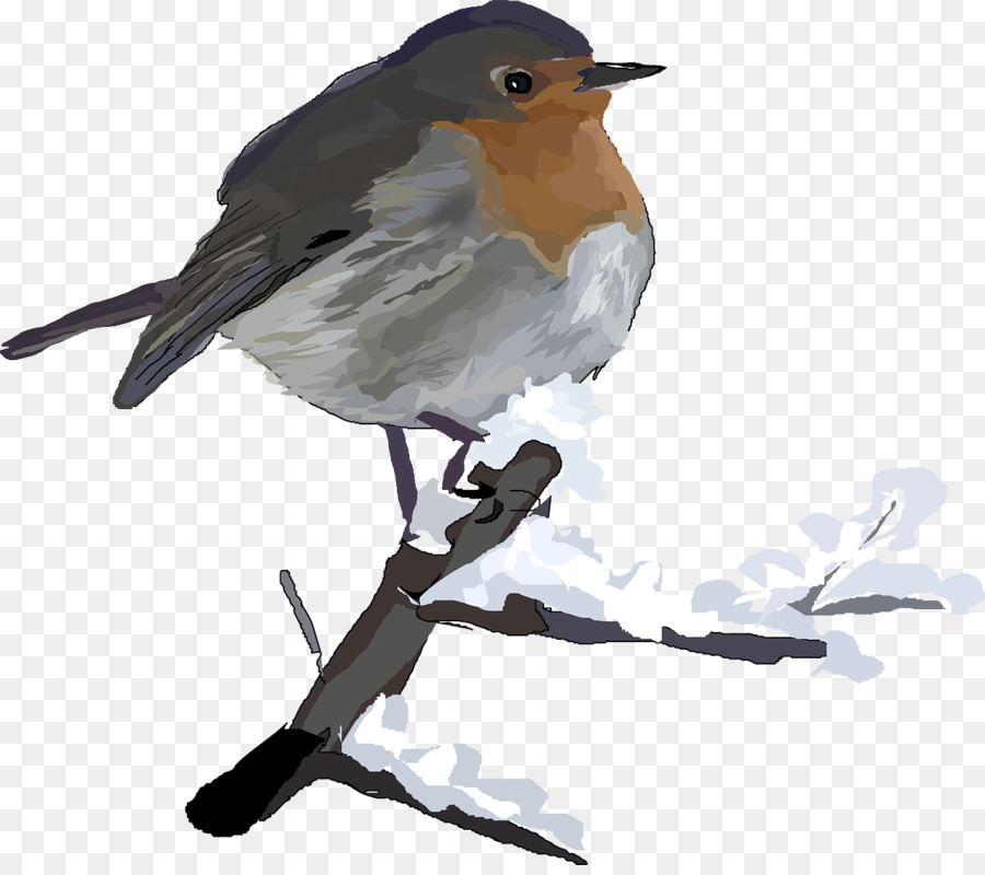 american robin christmas clip art winter birds - Is Red Robin Open On Christmas