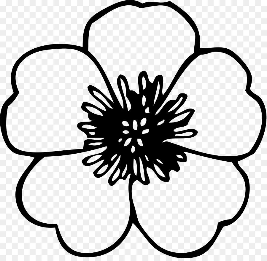 Flower Black And White Clip Art Anemone Flower Cliparts Png