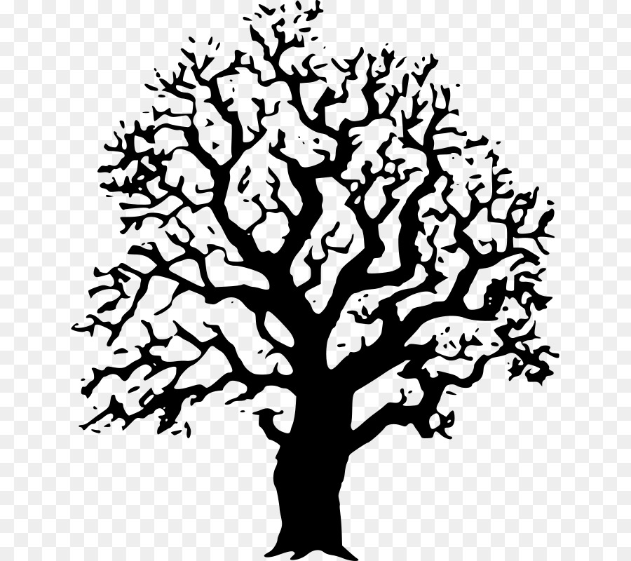 Tree black and white oak drawing clip art black trees cliparts