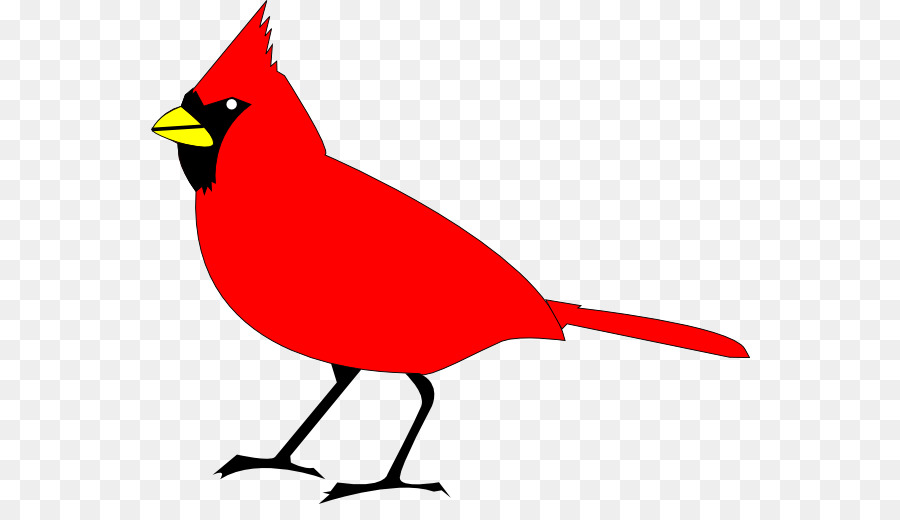northern cardinal st louis cardinals clip art free cardinal rh kisspng com  st louis cardinal baseball clipart