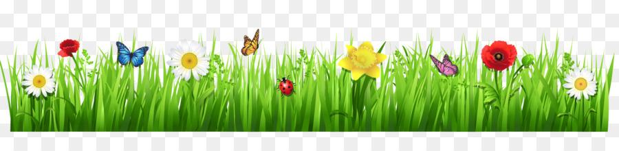Flower Grasses Clip art - Transparent Spring Cliparts png ...