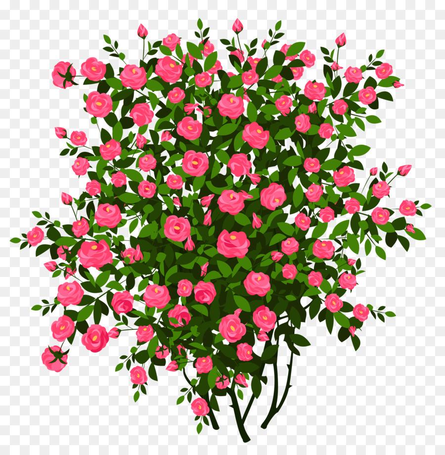 rose shrub drawing clip art green bush cliparts png download