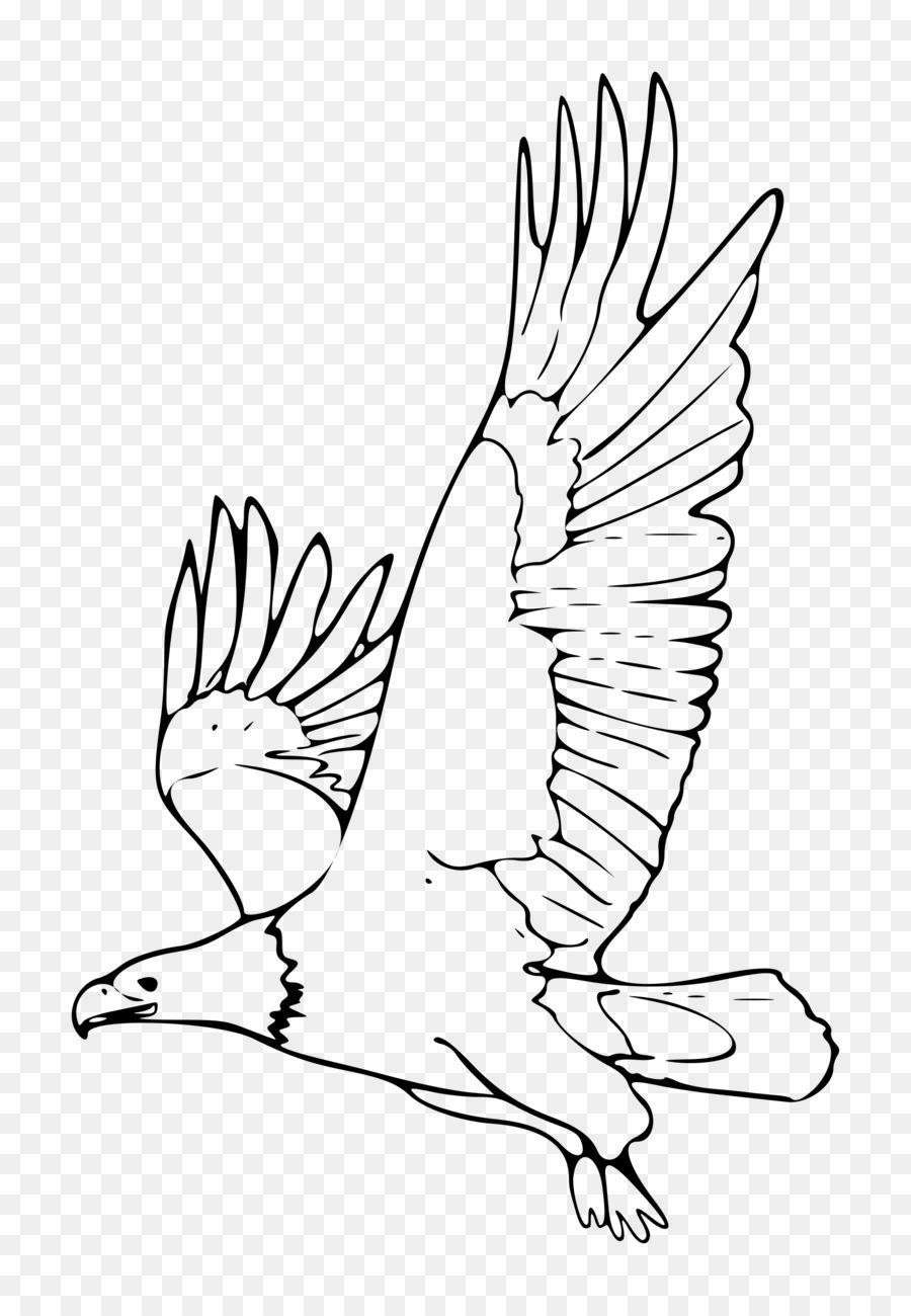 Bald Eagle Black And White Black And White Hawk Eagle Clip Art