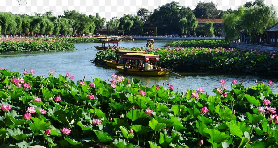 Beihai Park Forbidden City Jingshan Park Zhongnanhai - Beihai Park ...