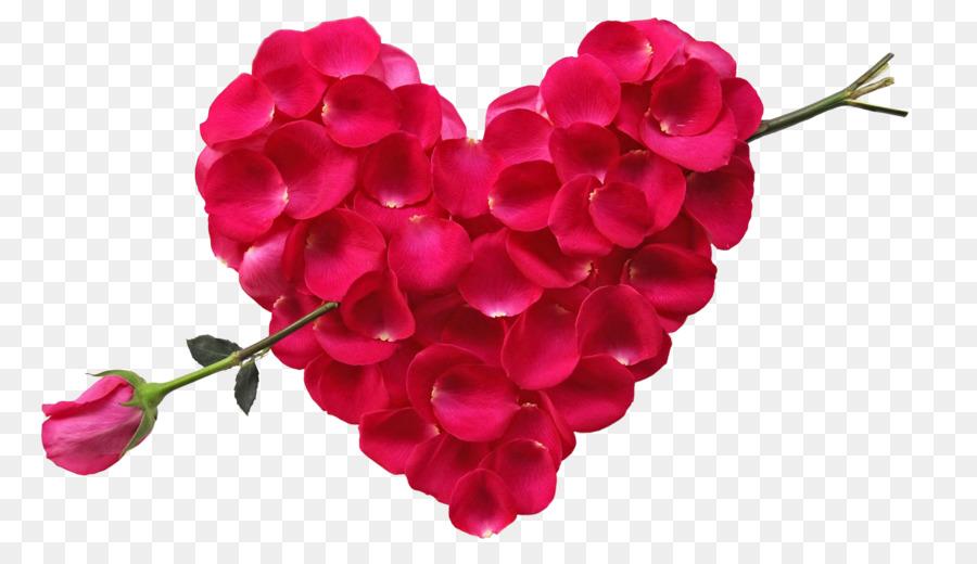 Flower bouquet Rose Heart Petal - Rose petals spell of Cupid png ...