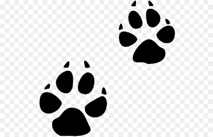 bear animal track squirrel footprint clip art bobcat track rh kisspng com Bobcat Clip Art for Schools Bobcat Mascot Clip Art