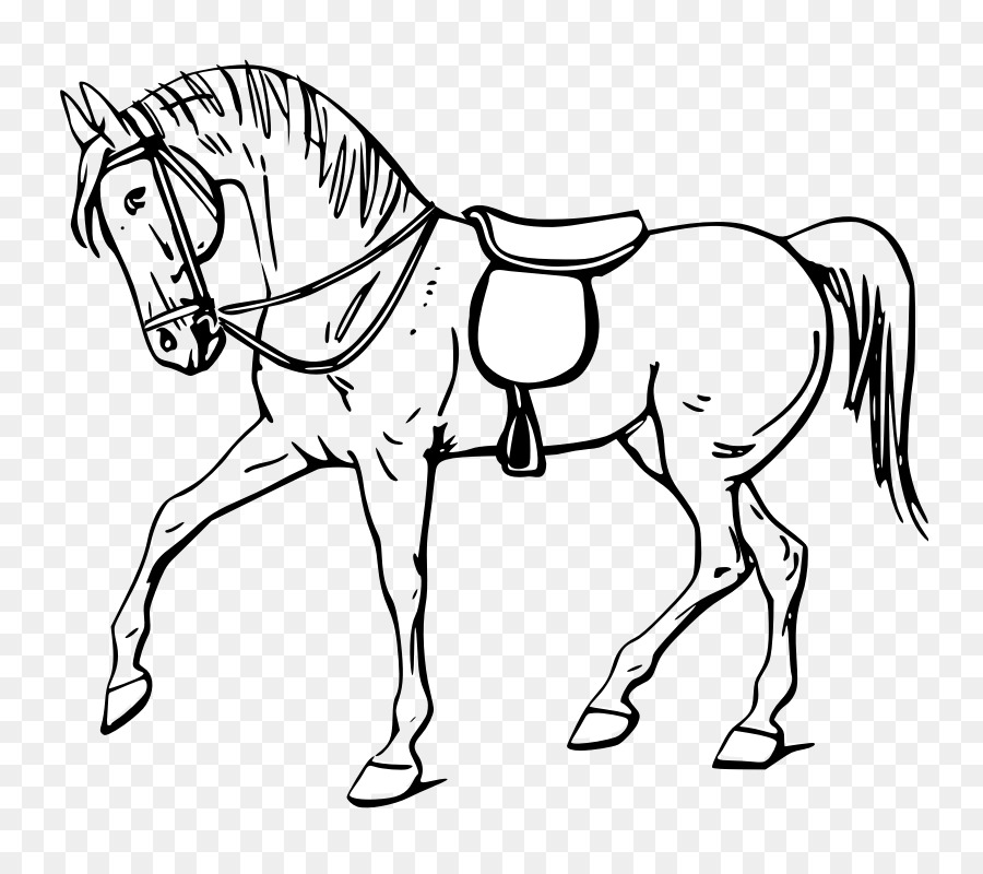 Tennessee Walking Horse Drawing Show Jumping Clip Art