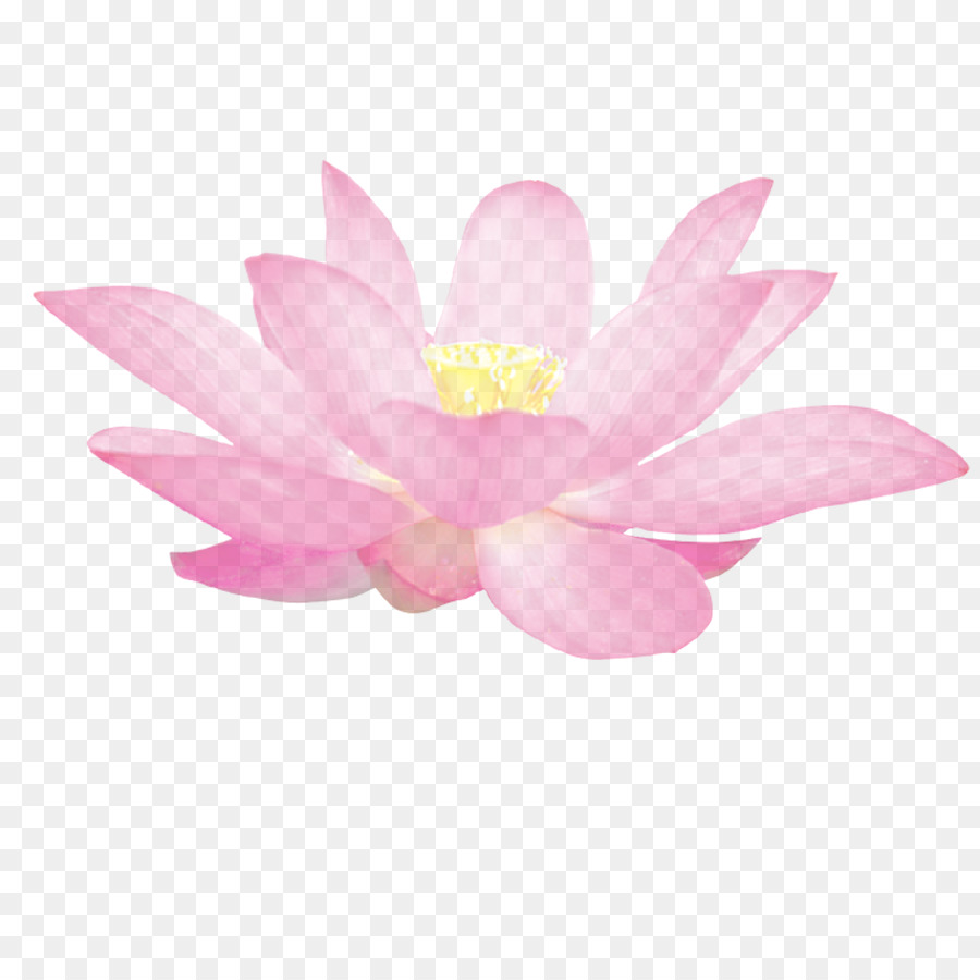 Nelumbo nucifera gratis buddhism lotus chinese style and elegant nelumbo nucifera gratis buddhism lotus chinese style and elegant pattern izmirmasajfo