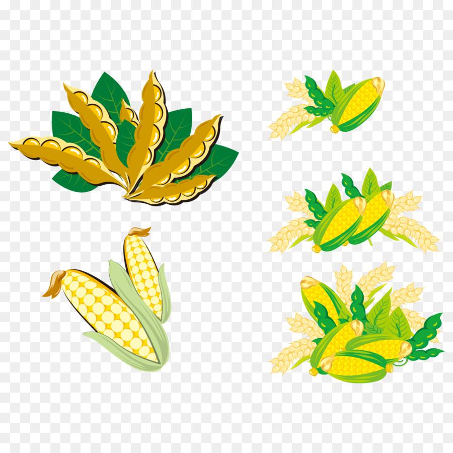 Kedelai Clip Art Jagung Unduh Kelopak Pabrik Bunga Daun