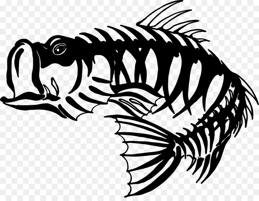 skeleton fishing bass clip art bass skeleton cliparts download Salmon Skeleton skeleton fishing bass clip art bass skeleton cliparts download 1200 917 free transparent skeleton download