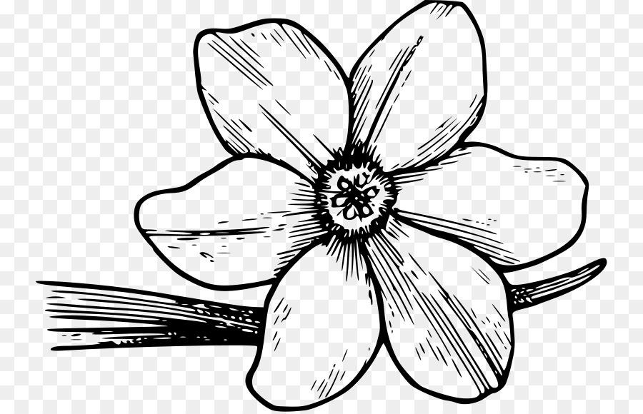 flowering dogwood drawing clip art free cliparts azaleas png rh kisspng com dogwood clip art free clipart dogwood tree