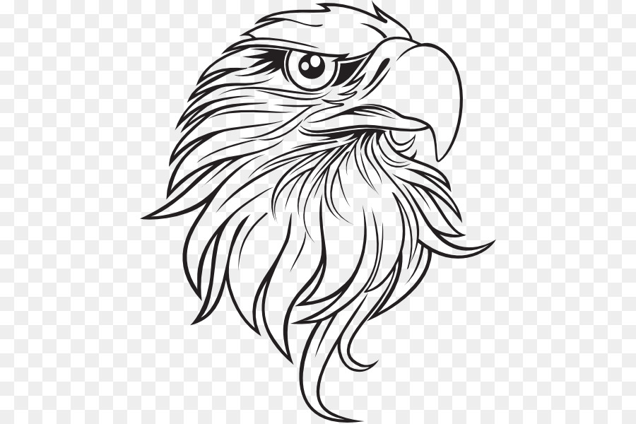 Bald Eagle Drawing Clip Art Eagle Outline Cliparts 504