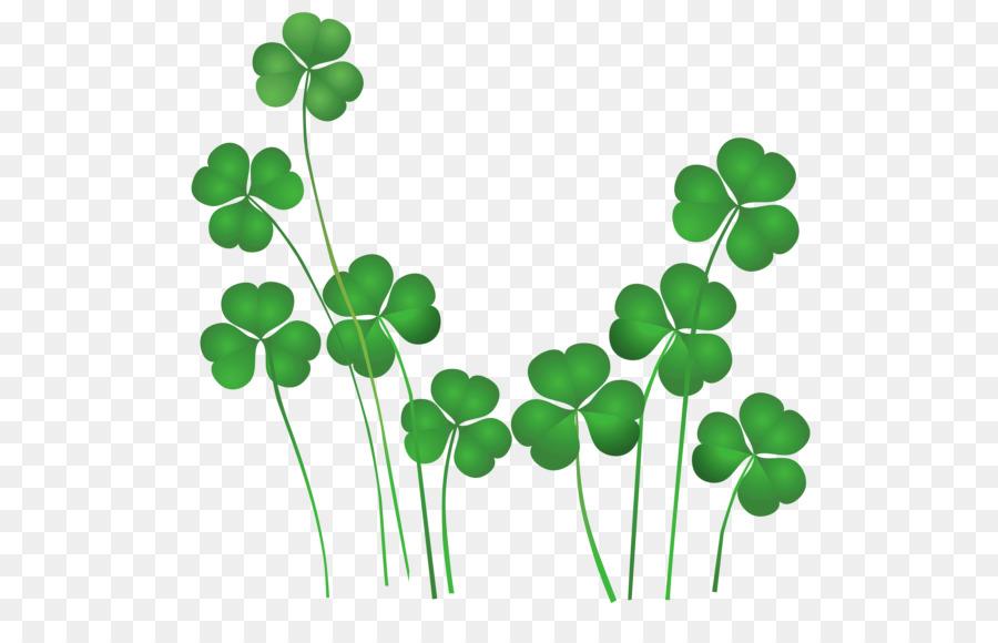 Irlanda el Día de San Patricio Trébol de San Patricio Día Nacional ...