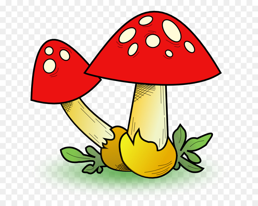 edible mushroom clip art mushroom cliparts png download 755 709 rh kisspng com mushroom clip art drawing mushrooms clip art borders
